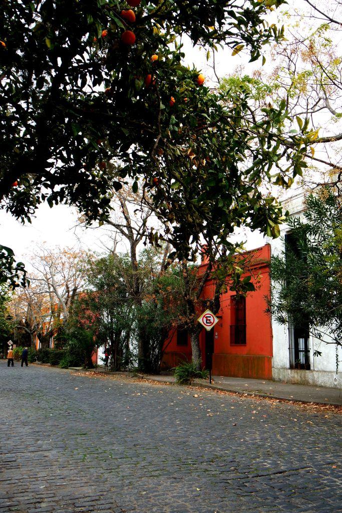 Plaza Mayor 25 del Mayo, Portakal Ağaçları, Rengarenk Eski Evler..